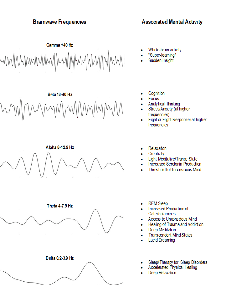 Brainwave Activity